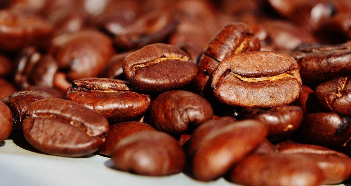 W poszukiwaniu najlepszej kawy
